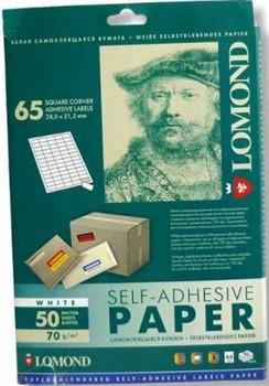 Lomond Наклейки А4: 65 частей (38.0х21.2)     2100215 - фото 4666